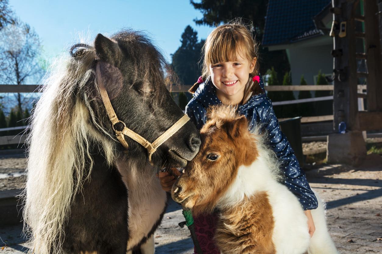 En liten jente med to ponnier. Her får du våre beste gavetips til barn.